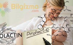 Prolaktin Hormonu Nedir? Ne İşe Yarar?