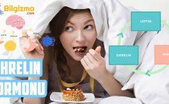 Ghrelin Hormonu (Açlık Hormonu) Nedir? Özellikleri, Etkisi ve Arttırma Yolları
