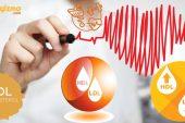Kolesterol Nedir? Neden Yükselir? Nasıl Düşürülür?