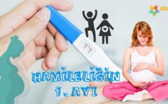 Hamileliğin 1. Ayı Nasıl Geçer?