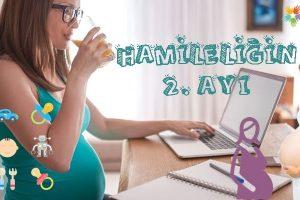 Hamileliğin 2. Ayı Nasıl Geçer?
