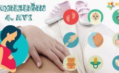 Hamileliğin 4. Ayı Nasıl Geçer?