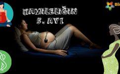 Hamileliğin 5. Ayı Nasıl Geçer?