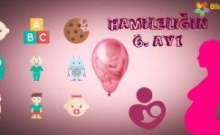 Hamileliğin 6. Ayı Nasıl Geçer?