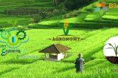 Agronomi Nedir? Agronomist Kime Denir?